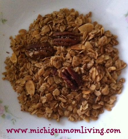 https://michiganmomliving.files.wordpress.com/2014/05/granola.jpg