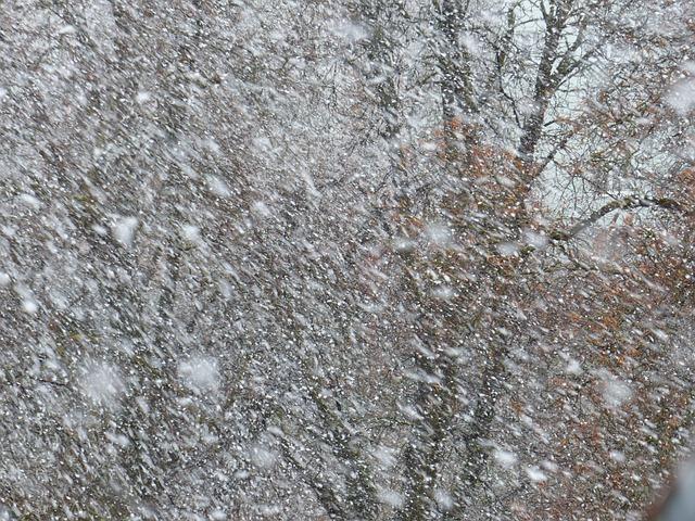 blizzard-91898_640
