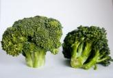 broccoli-166949_640