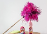feather-duster-709124_640