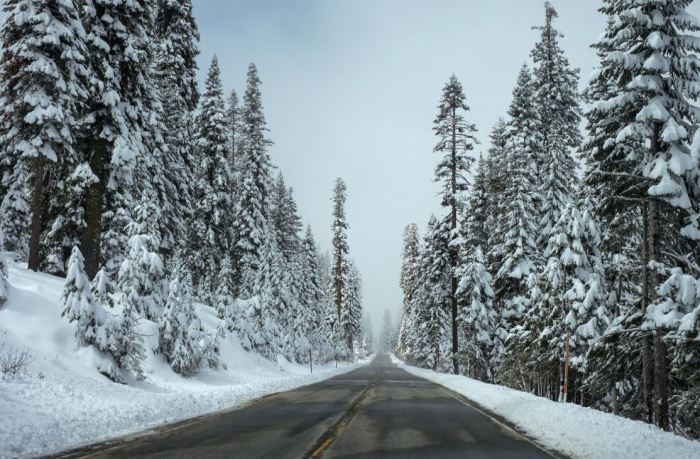 Winter Road Safety What Every Driver in Your Household Should Know_pexels_winter road.JPG